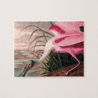 Impresión del vintage del pájaro del Spoonbill Rompecabezas Con Fotos
