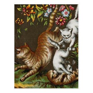 Impresión del vintage: Gatitos que juegan en el Postales