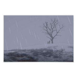 Impresión desapasible de la foto del invierno