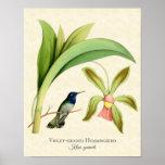 Impresión dirigida violeta del arte del colibrí