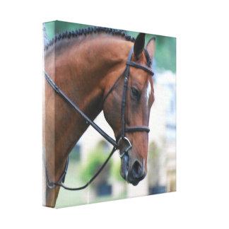 Impresión dulce de la lona del caballo de Morgan Impresiones En Lona Estiradas