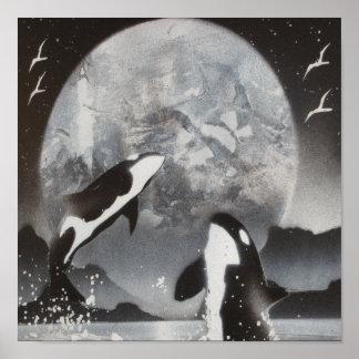 Impresión enmarcada orca póster