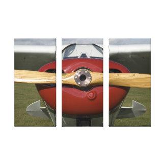 Impresión envuelta aeroplano de la lona lienzo envuelto para galerias
