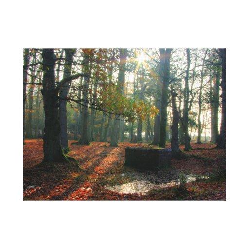 Impresión envuelta bosque de la lona del otoño impresion de lienzo