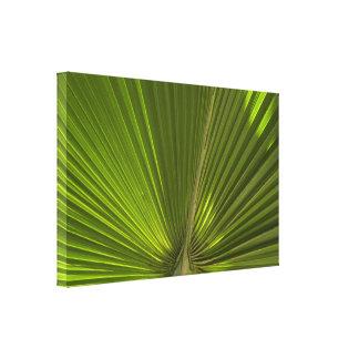 Impresión envuelta fronda verde de la lona de la p lona estirada galerias