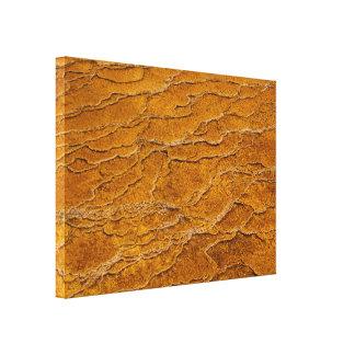 Impresión envuelta ondulaciones abstractas de la lienzo envuelto para galerias