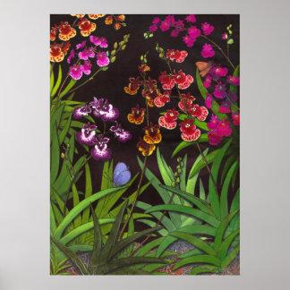 Impresión equitante de las orquídeas de Oncidium T Poster