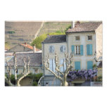 IMPRESIÓN - escena Francia del pueblo rural Arte Fotográfico