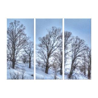 Impresión escénica de la naturaleza de los árboles impresión en lona estirada