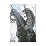 Impresión estirada árbol de la lona impresión en lona