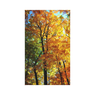 Impresión estirada árboles de la lona del otoño impresiones de lienzo