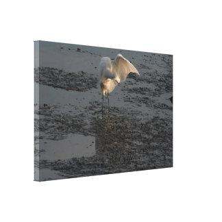 Impresión estirada del Egret nevado Impresiones En Lienzo Estiradas