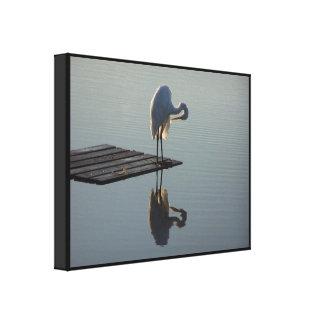 Impresión estirada Egret del amanecer Lona Estirada Galerías