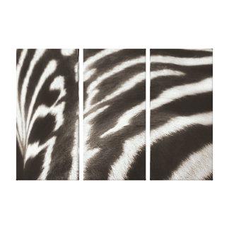 Impresión estirada foto de la lona de la cebra de  impresiones en lienzo estiradas