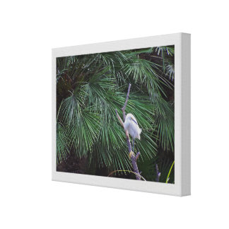 Impresión estirada frondas del Egret y de la palma Impresión En Lienzo Estirada