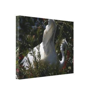 Impresión estirada gran Egret Lienzo Envuelto Para Galerías