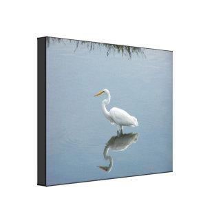 Impresión estirada gran Egret Lona Envuelta Para Galerías