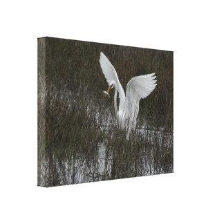 Impresión estirada gran Egret Lona Envuelta Para Galerias