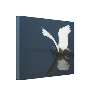 Impresión estirada gran Egret Lienzo Envuelto Para Galerias