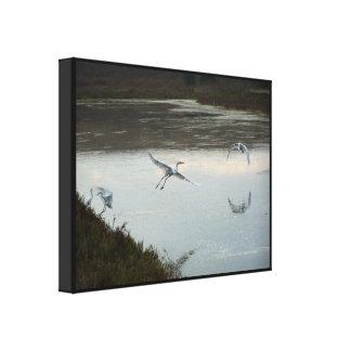 Impresión estirada mañana del Egret Impresión En Lienzo Estirada