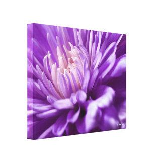 Impresión floral abstracta de la lona lona estirada galerias