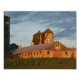 Impresión fotográfica de oro del granero 10x8