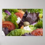 Impresión fresca de la ensalada impresiones