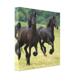 Impresión frisia galopante de la lona de los cabal impresión en lona estirada