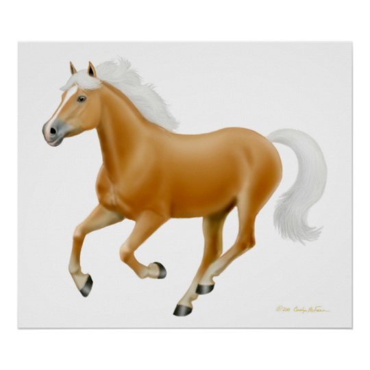 Impresión galopante del caballo de Haflinger del