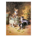 """Impresión: """"Gatitos que juegan con los escarabajos Impresiones"""