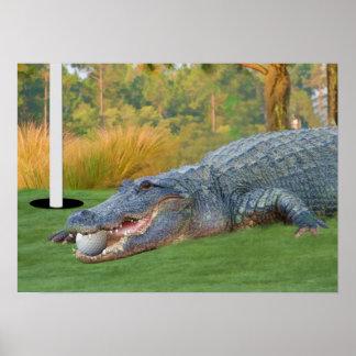 Impresión Golfing del cocodrilo de la mentira peli Póster