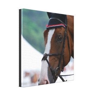 Impresión grande de la lona del caballo de Warmblo Impresiones En Lona Estiradas