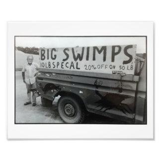 Impresión grande de Swimps… Cojinete