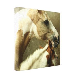 Impresión gris de la lona del caballo de Eventing Lona Envuelta Para Galerías
