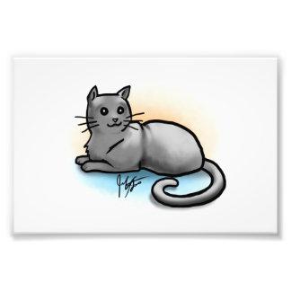 Impresión gris del gato cojinete