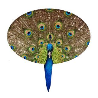 Impresión hermosa de las plumas del pavo real y de figuras de tarta