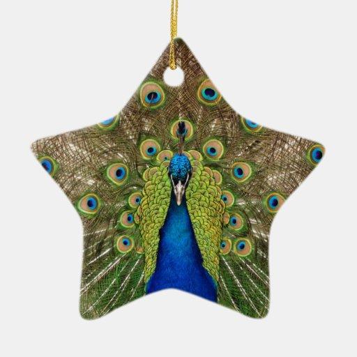 Impresión hermosa de las plumas del pavo real y de ornamento para arbol de navidad