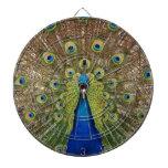 Impresión hermosa de las plumas del pavo real y de tablero dardos