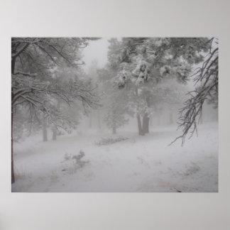Impresión imperecedera de la nevada posters