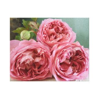 Impresión inglesa de los rosas de la herencia de D Impresion En Lona