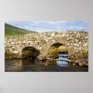 Impresión irlandesa vieja del puente poster
