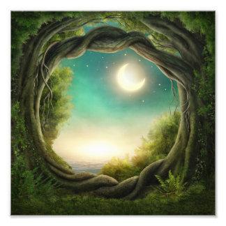 Impresión mágica de la foto del árbol de la luna fotografías