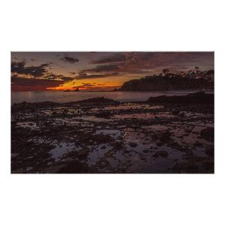Impresión marrón de la puesta del sol de la cojinete
