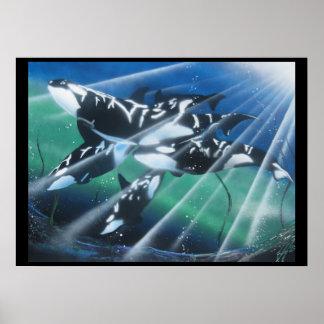 Impresión mate de la orca subacuática