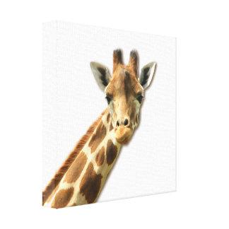 Impresión Necked larga de la lona de la jirafa Lienzo Envuelto Para Galerias