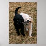Impresión negra y blanca de la lona de los perrito posters