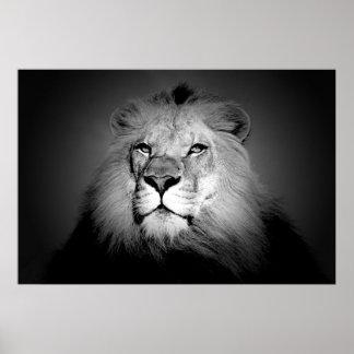 Impresión negra y blanca del poster del león