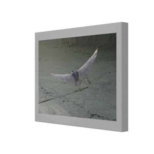 Impresión Negro-Coronada de la lona del vuelo de l Lienzo Envuelto Para Galerías