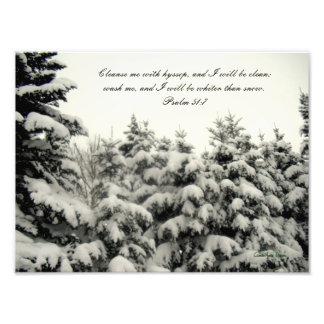 Impresión nevada de los árboles fotografías