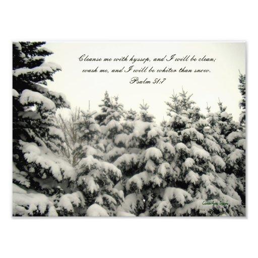 Impresión nevada de los árboles impresión fotográfica